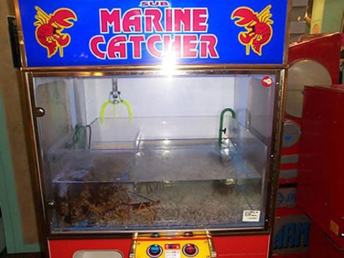 Sub Marine Catcher